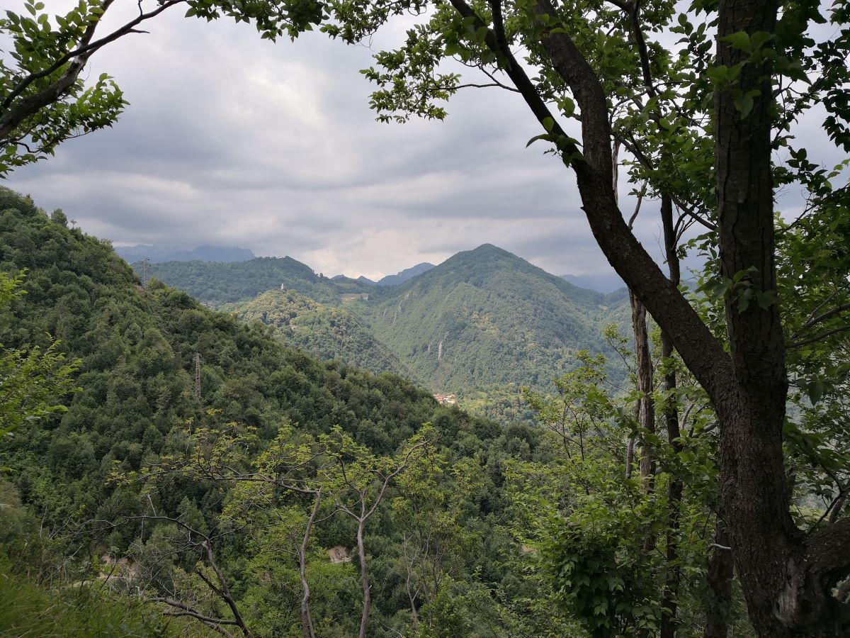 Valle del Boia paesaggio.jpg